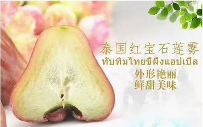 云南省昆明市官渡区泰国红宝石 3-5cm