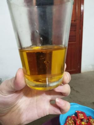 广西壮族自治区贺州市昭平县野生山茶油