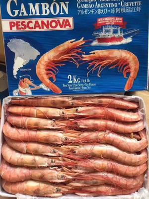 这是一张关于阿根廷红虾 的产品图片
