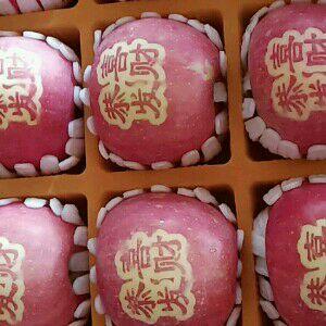 山东省烟台市栖霞市红富士苹果 75mm以上 条红 纸袋