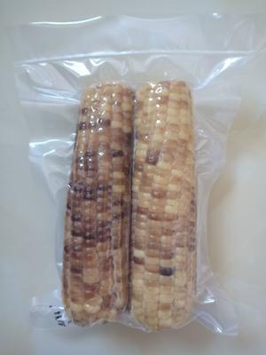 吉林省长春市二道区珍珠糯玉米 净货 水份<14%