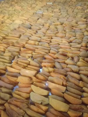 吉林省白山市抚松县农家自制生地瓜干  1年 片状 散装 是熟地瓜干,不是生的