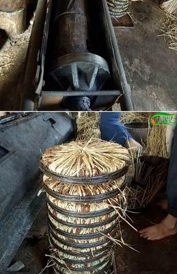 贵州省黔东南苗族侗族自治州黎平县茶枯