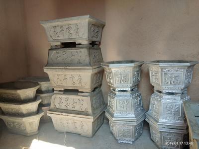 云南省红河哈尼族彝族自治州泸西县冰水花盆栽