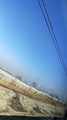 安徽省宣城市郎溪县苦艾