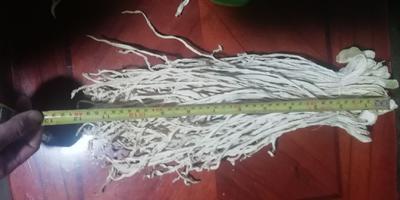 云南省昆明市寻甸回族彝族自治县萝卜干