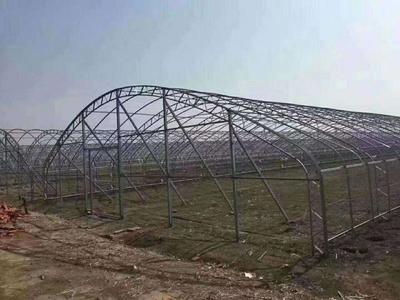 黑龙江省哈尔滨市道外区蔬菜大棚