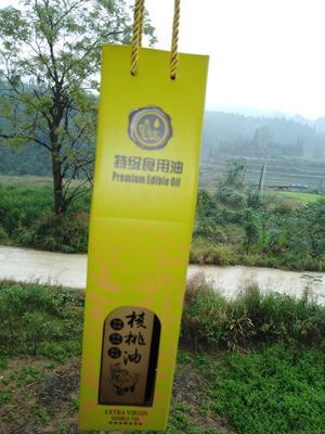 湖南省怀化市靖州苗族侗族自治县原生态核桃油