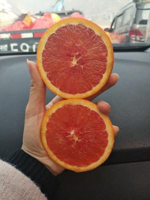 这是一张关于红心脐橙 65 - 70mm 4-8两 的产品图片