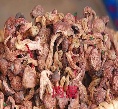 河北省承德市丰宁满族自治县干红蘑菇 散装 1年以上