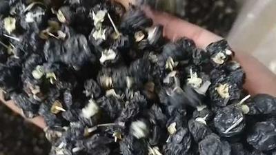 这是一张关于黑枸杞 二级 的产品图片