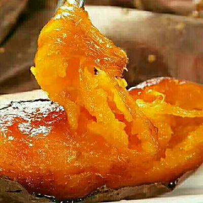 河北省廊坊市安次区烟薯25 1斤~1.5斤 红皮