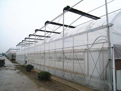 这是一张关于文洛式温室大棚 的产品图片
