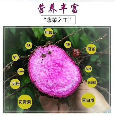 广东省肇庆市德庆县南紫薯008 1斤以上