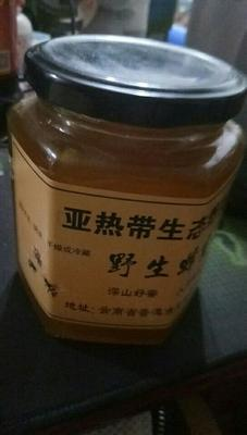 云南省普洱市孟连傣族拉祜族佤族自治县土蜂蜜 塑料瓶装 100% 2年以上