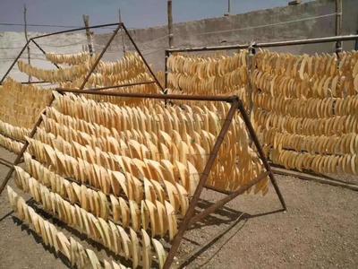 这是一张关于哈密瓜干 的产品图片