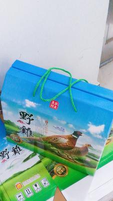 陕西省商洛市商州区七彩山鸡 3-4斤