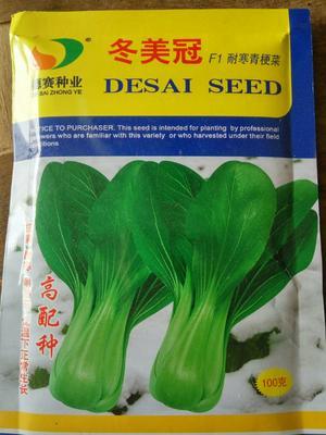 这是一张关于青梗菜种子 的产品图片