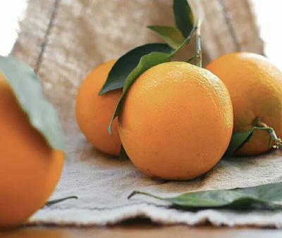 这是一张关于赣南脐橙 75 - 80mm 4-8两 的产品图片