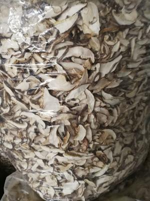 湖北省随州市曾都区香菇片  箱装 随州特级出口香菇片