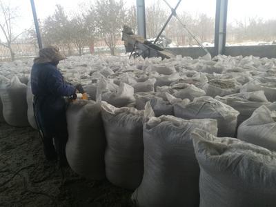 新疆维吾尔自治区伊犁哈萨克自治州奎屯市棉籽壳