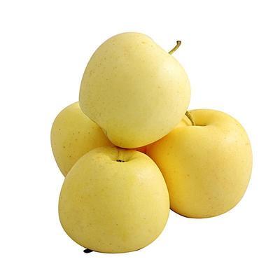 甘肃省陇南市礼县黄元帅苹果 75mm以上 黄色 纸袋