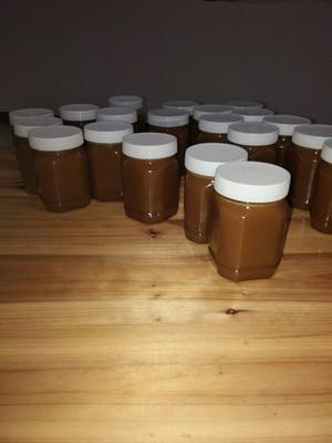 贵州省黔东南苗族侗族自治州从江县野生蜂蜜 塑料瓶装 2年 100%