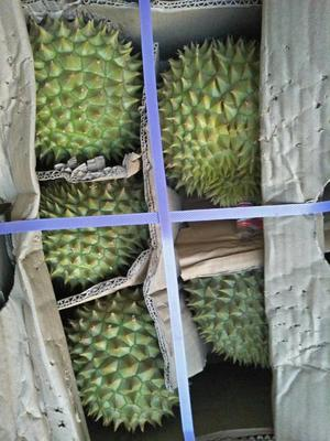 这是一张关于干荛榴莲 2公斤以下 90%以上 的产品图片