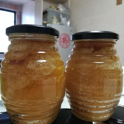 福建省龙岩市上杭县土蜂蜜 塑料瓶装 2年 100%