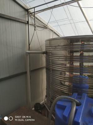 黑龙江省哈尔滨市道外区钢管大棚