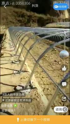 江苏省宿迁市沭阳县蔬菜大棚