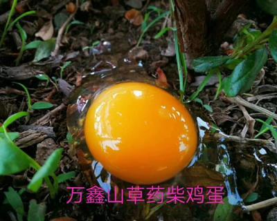 陕西省西安市新城区柴鸡蛋 食用 礼盒装