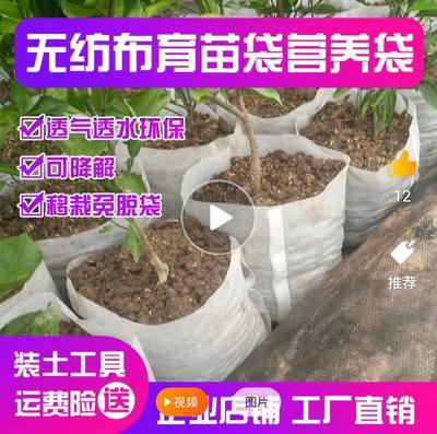 这是一张关于种植袋/植树袋/美植袋 的产品图片