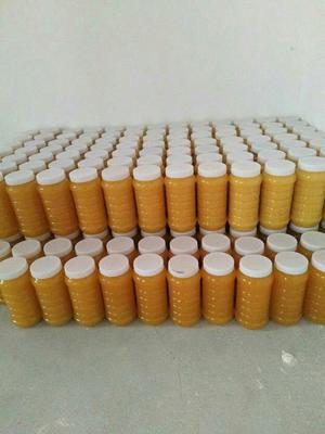 新疆维吾尔自治区阿勒泰地区阿勒泰市新疆罗布麻蜂蜜 玻璃瓶装 1年 80%以上
