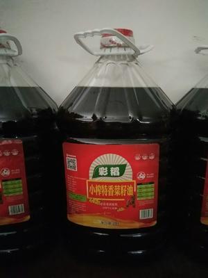 湖南省常德市武陵区压榨菜籽油