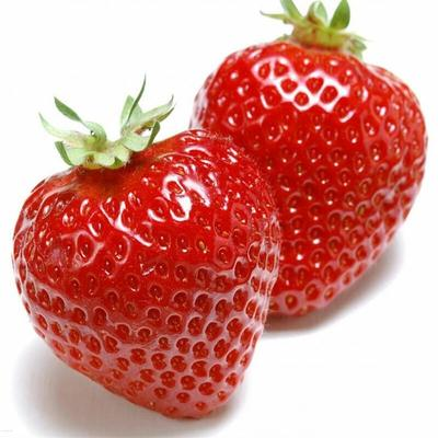 这是一张关于奶油草莓 20克以上 的产品图片