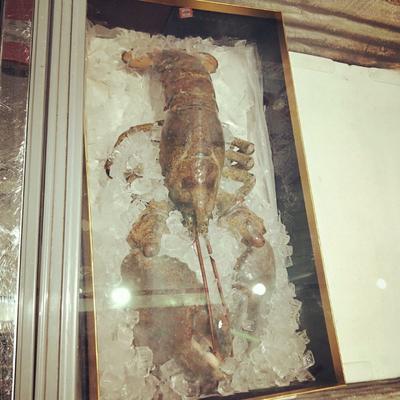 这是一张关于波士顿龙虾 进口 4-6斤/只 (生)波龙的产品图片