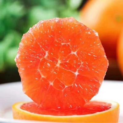 这是一张关于血橙 70-75mm 4-8两 的产品图片