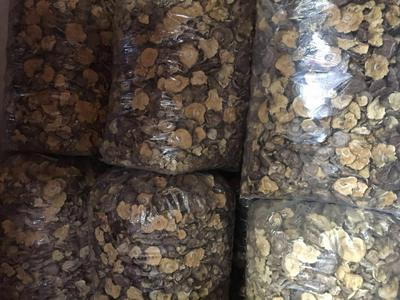 福建省龙岩市漳平市干香菇0912 散装 1年以上