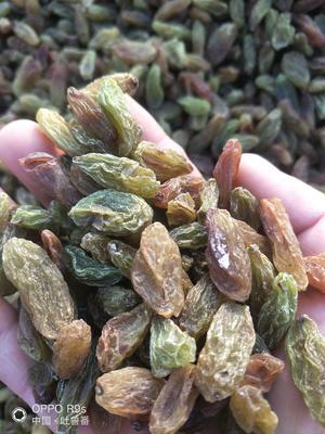 新疆维吾尔自治区吐鲁番地区鄯善县绿香妃葡萄干  一等