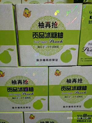 广东省广州市荔湾区梅州蜜柚 5斤以上