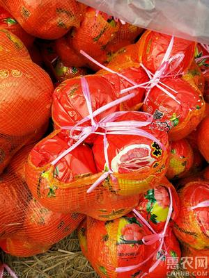 重庆万州区红心柚 2.5斤以上