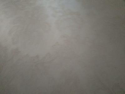这是一张关于北美海棠 的产品图片