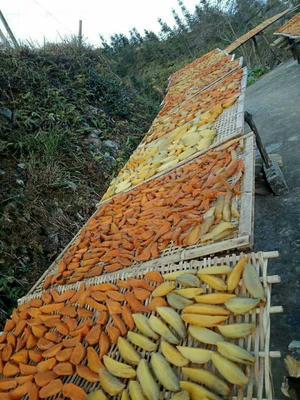 广西壮族自治区桂林市永福县红薯干 半年 条状 袋装