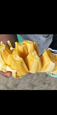 海南省海南省保亭黎族苗族自治县海南菠萝蜜 15斤以上