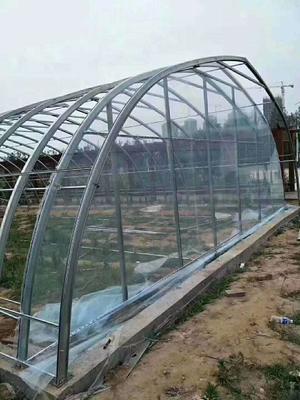 黑龙江省种植大棚