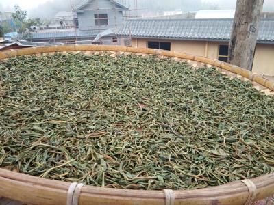 云南省西双版纳傣族自治州勐腊县云南绿茶 三级 散装