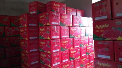 这是一张关于红富士苹果 75mm以上 统货 纸+膜袋 的产品图片