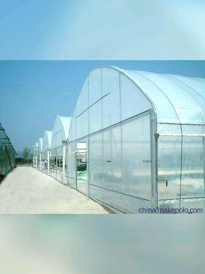 黑龙江省哈尔滨市道外区养殖大棚