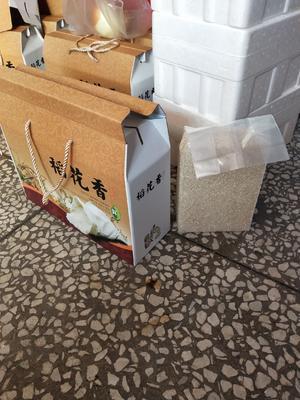 吉林省辽源市东辽县 稻花香大米 一等品 一季稻 粳米